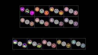 bisected Goldberg polyhedron(I 0, n) & (I n, n)_analytic_all