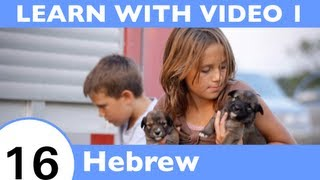 Learn Hebrew With Video - All the Joy of Learning Hebrew Begins Right Here!