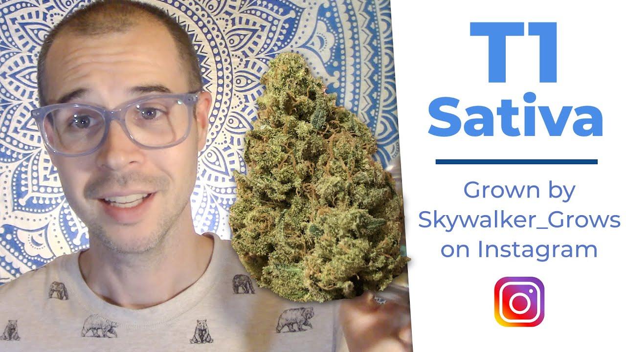 T1 Sativa High CBD Hemp Flower Review | Skywalker_grows | Conscious Clouds Episode 24