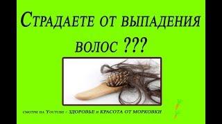 Страдаете от выпадения ВОЛОС ???  Здесь вы найдете НАИЛУЧШИЕ рецепты от ОБЛЫСЕНИЯ!!!!!!!
