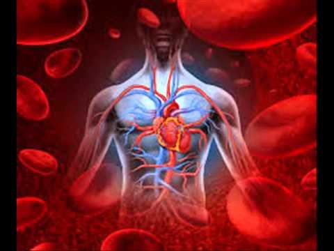 Help Lowering Blood Pressure and stimulate Thymus, Heart, Blood Circulatory System Binaural beats