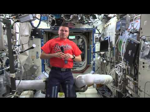 Maryland Astronaut Talks to Home State Media About Life in Space