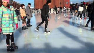 Япония. Город-порт Йокогама в феврале. Парк Ямасита и Арт Каток.