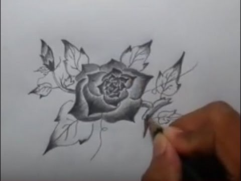 Drawing Flower With Pencil Youtube