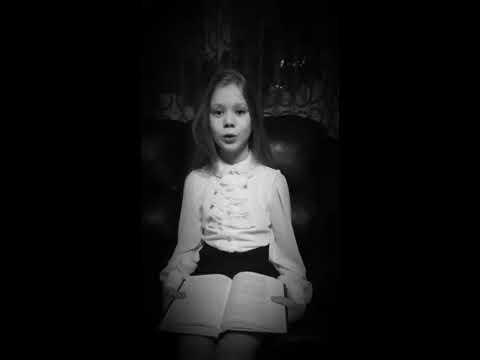 Изображение предпросмотра прочтения – МарияКлевцова читает произведение «Смерть поэта (Погиб поэт! Невольник чести…)» М.Ю.Лермонтова