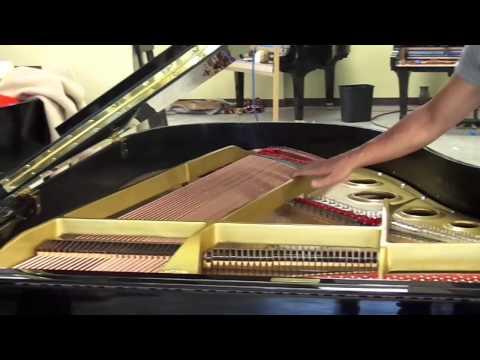 Yamaha C3 Grand Piano Comparison