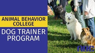 Dog Trainer School | Animal Behavior College