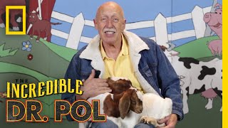 Kidding Around - Season 1, Episode 9 | Barnyard Babies with Dr. Pol