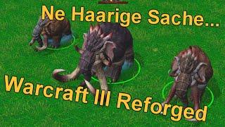 Ne Haarige Sache...    Warcraft 3 Reforged