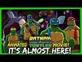 Batman vs TMNT MOVIE: Overall Thoughts On The Designs