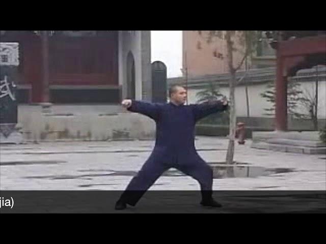 Wang Zhan Jun - Tai Chi style Chen Laojia Yilu  [陈氏太极拳老架 Taijiquan style Chen]