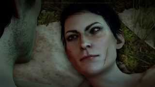 Dragon Age™: Inquisition - Cassandra Romance