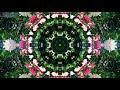 Download Adhd Music For Studying - Binaural Beats Focus Mus