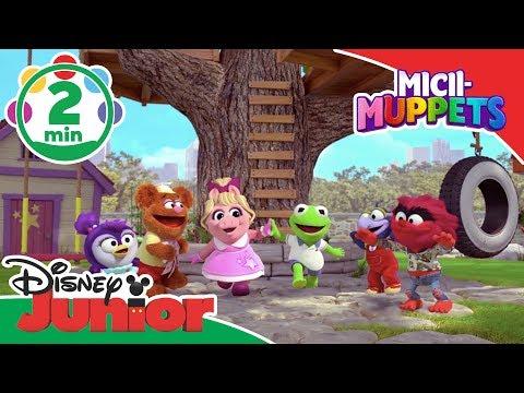 Spectacolul Muzical  Muppets MiciiMuppets  Disney Junior România