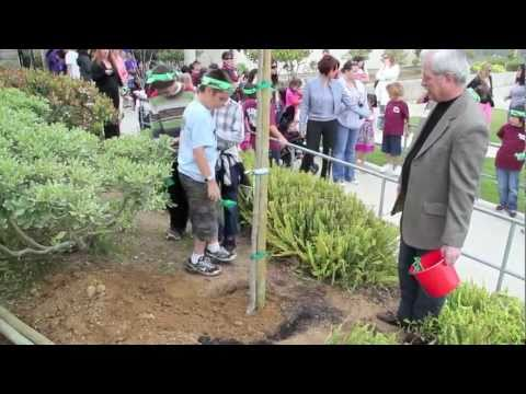 Arbor Day Celebrations at Pantera Elementary School