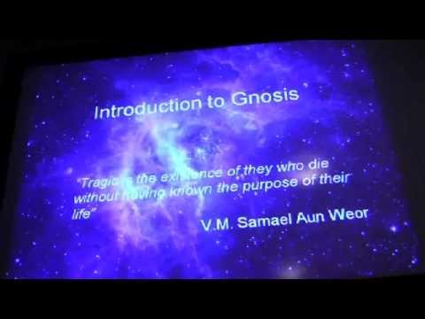 Gnostic Studies on the Web