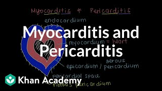 What is myocarditis and pericarditis?   Circulatory System and Disease   NCLEX-RN   Khan Academy