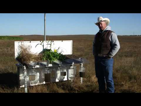 Rainfall Management on Doug Sieck's Ranch in North Central South Dakota