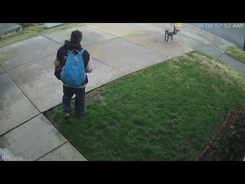 Parcel thief near Cosumnes River college SACRT Station 2