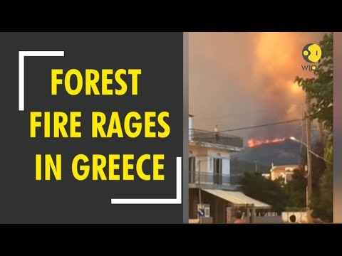 Greece hit by wildfire again; two villages of Evia evacuated as forest fire rages on