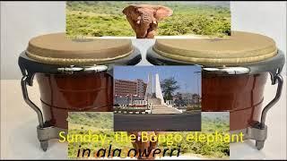 Owerri bongo misic By Sunday The  bongo  Elephant
