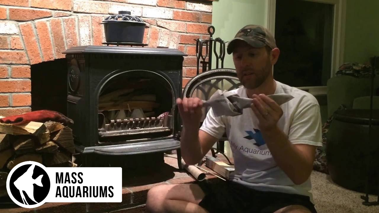 Blazing Wood Stove: How to Light a Wood Stove with 1 Match - Blazing Wood Stove: How To Light A Wood Stove With 1 Match - YouTube