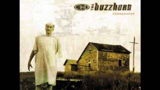 Watch Buzzhorn Ordinary video