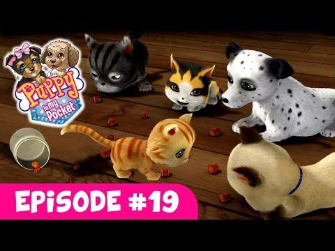 Puppy In My Pocket - Episode #19