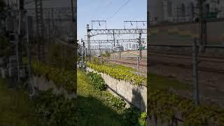 서울1호선 납작이,화물열차 통과영상 띵똥일기 21년 5…