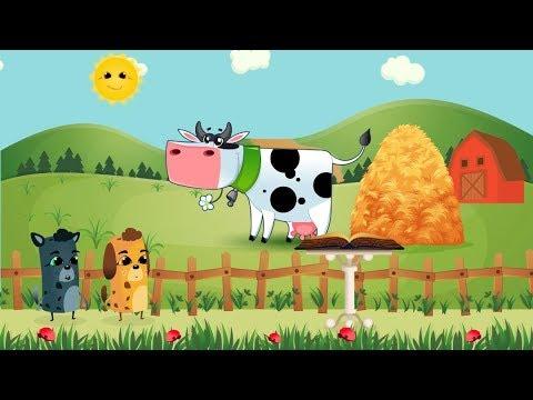 Видео Каких животных выращивают
