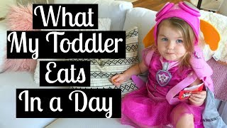 DAY IN THE LIFE OF A SAHM VLOG | What My Toddler Eats + Sleep Training Shay | Tara Henderson