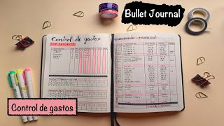 BULLET JOURNAL   HOW TO TRACK YOUR FINANCES screenshot 4