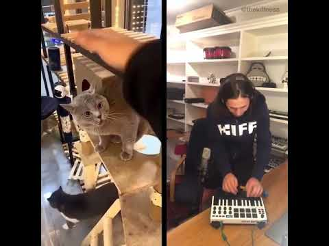 the art of creating music
