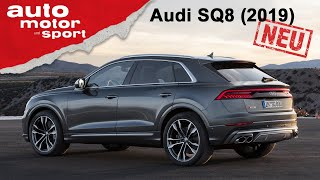 Audi SQ8 TDI (2019): Diesel-Frust trotz 900 Newtonmeter? – Review/Fahrbericht | auto motor und sport