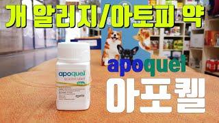 아포퀠(apoquel) 강아지 알러지/아토피 치료약 소…