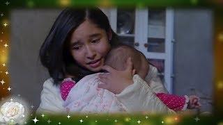 La Rosa de Guadalupe: Angélica no asimila estar embarazada   Madre …