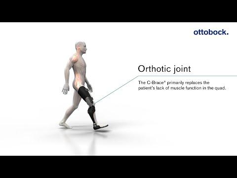 How the CBrace® leg orthosis works | Ottobock