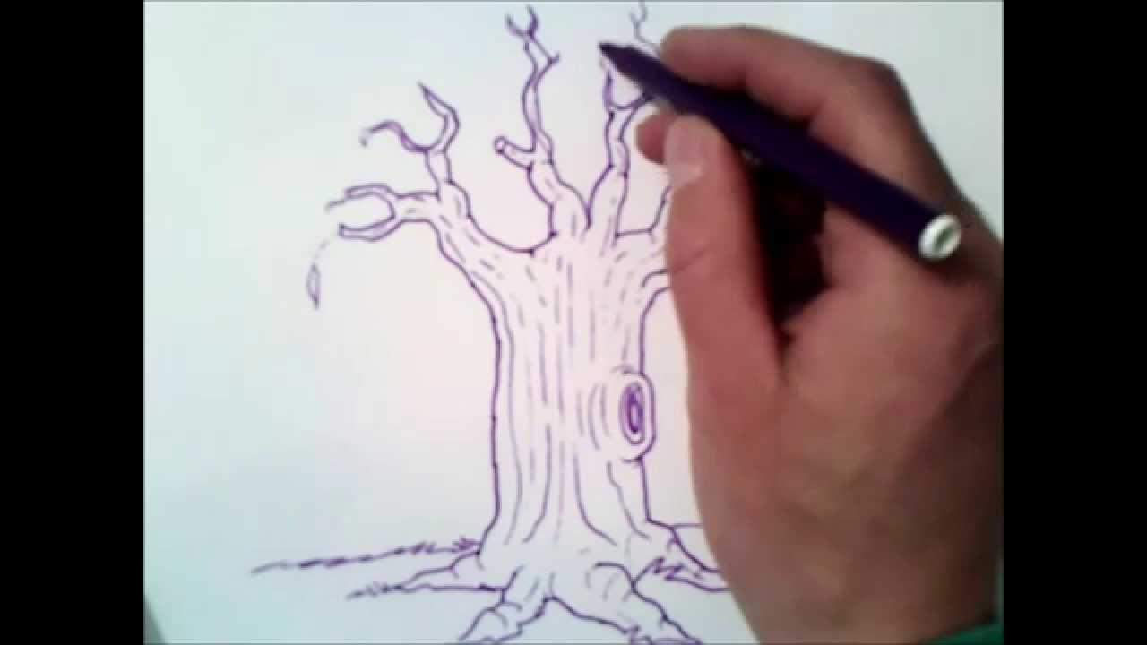 come disegnare un albero senza foglie  passo dopo passo