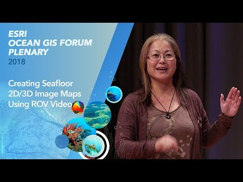 Creating Seafloor 2D/3D Image Maps Using ROV Video