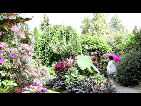 Green Spaces of Vancouver - British Columbia, Canada