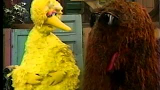 Sesame Street - Big Bird Wants a New Name (Part 2)
