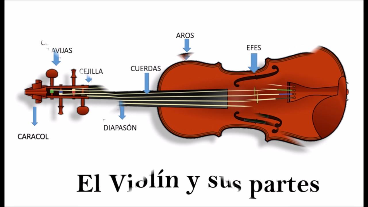 El Violin Y Sus Partes