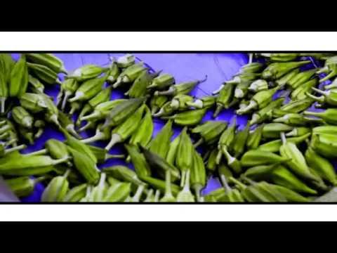 Liberian Music 2015 - Marvelous MC -Liberian Food (Official Video)