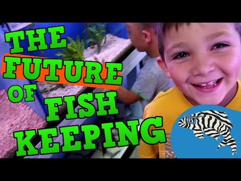 Inspiring the Next Generation of Fishkeepers