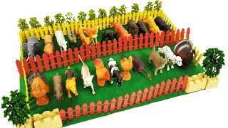 Farm animals and Wild Animals stand in line II Stop Motion with animal toys    Rim Rim Arts