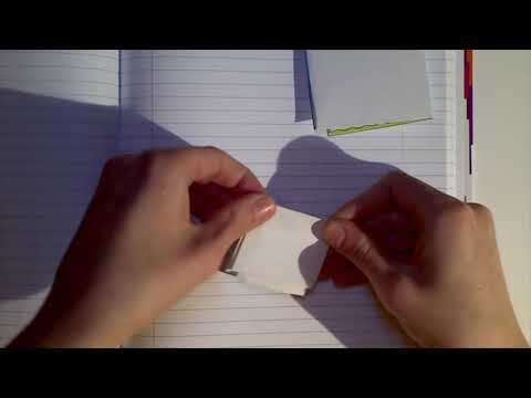 Adverbs: Interactive Notebook Activity (IGN L8-1)