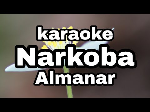 Narkoba Karaoke Almanar