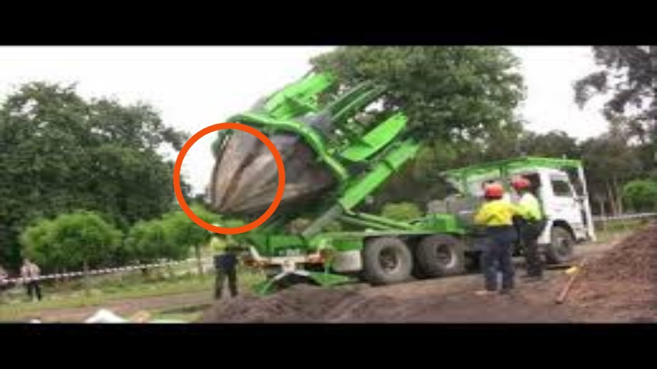 Download Tree Transplanting with ArborCo Melbourne.m4v