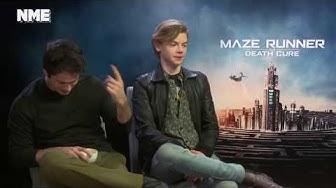 thomas brodie-sangster is a piece of shit