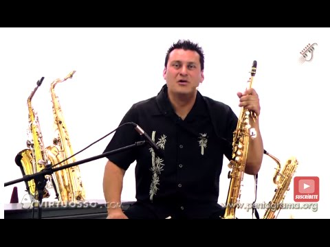 Clases de saxofón - Tipos de saxofones